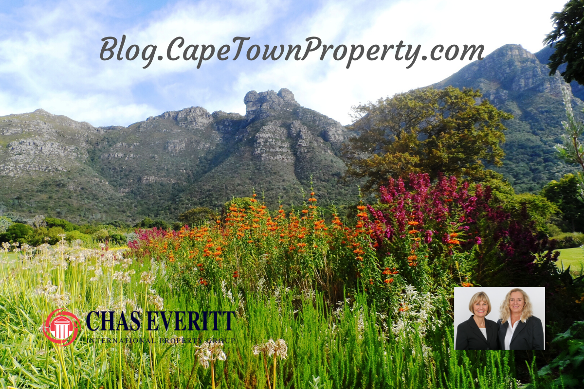Cape Town Property Blog